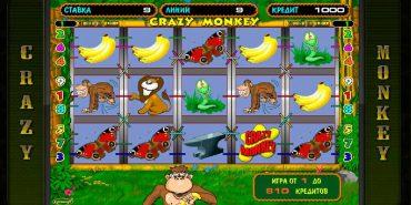Почему игровой автомат онлайн Крейзи Манки так полюбился многим?